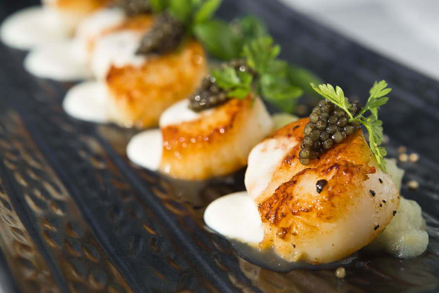 Canadian Scallops